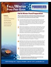Fall Pond Maintenance Tips