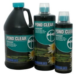 Pond Clear