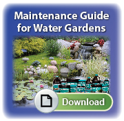 Pond Maint Guide to  CTA feather 04